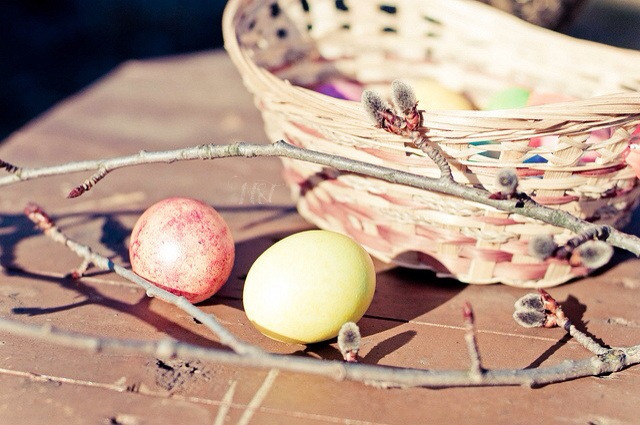 weekly tag #holidaydeco  'are u ready to hunt eggs?    #easter2014  #cute  #macro