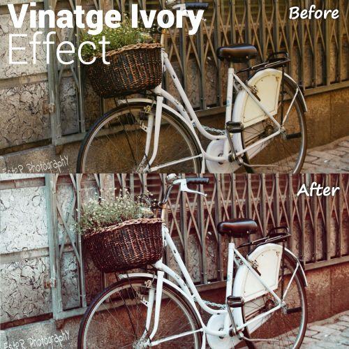 Vintage Ivory photo effect