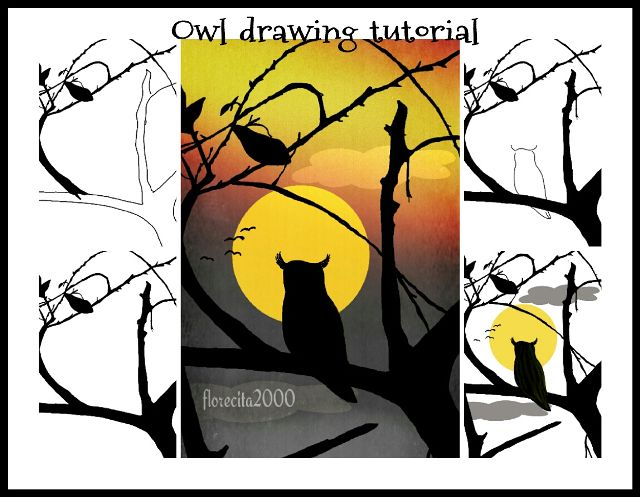 how to draw an owl step by step