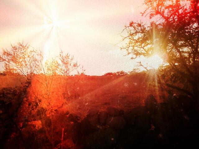 #sun #love