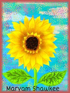 dcsunflowers flower artwork nature summer