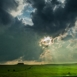 Nikonlove Nikon sun green niceday