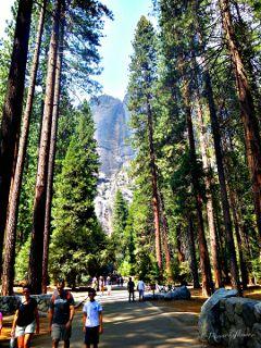 travel nature byebyesummer mysanctuary people