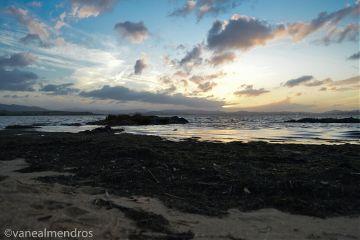 photography nature byebyesummer emotions sunset