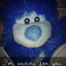 quotesandsayings softtoy photography