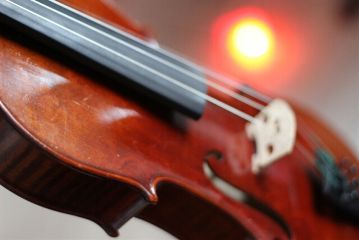 violin photography instrument passion winter