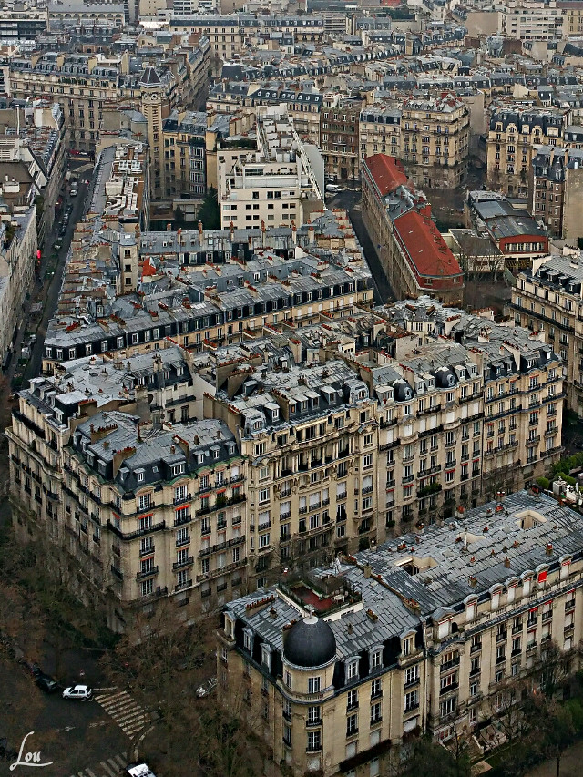 #paris #architecture #photography #roofs  #parisbyLou #roofs