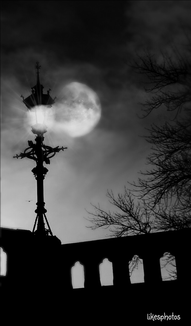 Sweet dreams dear friends ♡  The dream is the liberation of the spirit from the pressure of external nature,  a detachment of soul from the fetters of matter. Sigmund Freud  #quotes #moon #blackandwhite #night #black & white #emotion